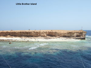 Little-Brother-Island-300x225